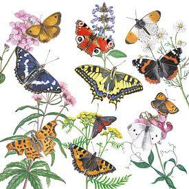Wilde planten en haar vlinders van Jasper de Ruiter