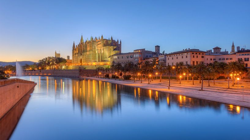 Cathedral of Palma de Mallorca van Michael Valjak