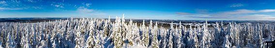 Besneeuwde panorama van Zweedse heuvels