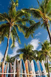 Surfen collectie voorbeeld