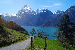 Zwitsers bergpad van