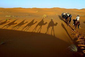 Kamelentocht Erg Chebbi woestijn in het zuiden van Marokko