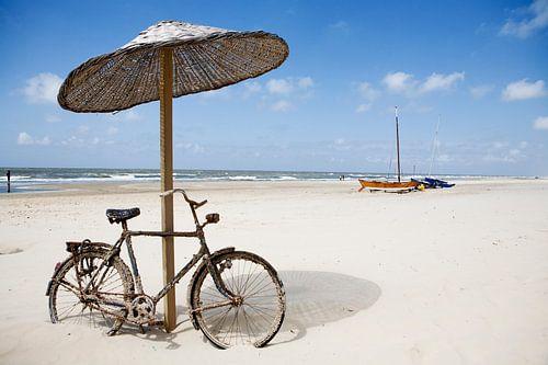 ZOMERSTILTE - SILENT SUMMER van HANS VAN DAM