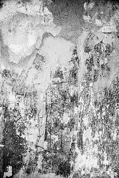 Der Zahn der Zeit schwarz auf weiß von Chantal Koster