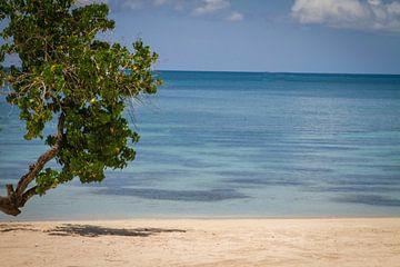 Caribisch strand met blauwe zee van Malu de Jong