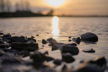 stenen in de Rijn van Tania Perneel