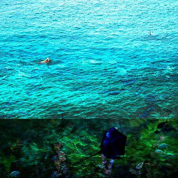 Onder het wateroppervlak sur