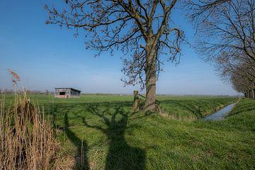 Schuur in weiland 03 von Moetwil en van Dijk - Fotografie