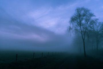 Mistige morgen sur Arjan Penning