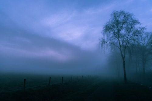 Mistige morgen van Arjan Penning