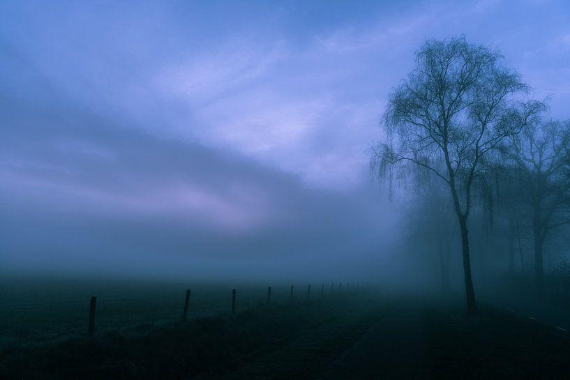 Mistige morgen von Arjan Penning