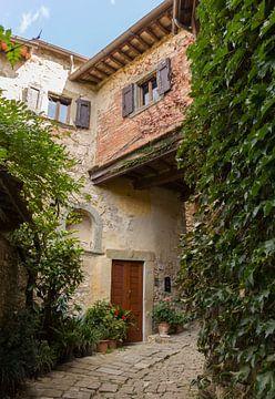 Rue Toscane sur MDRN HOME