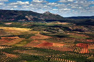 Patchwork in Andalusië