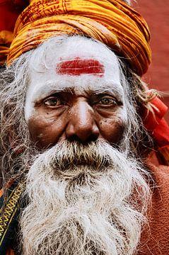 Sadhu Indien von Nico van der Vorm
