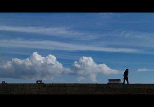 eenzame wandelaar  van