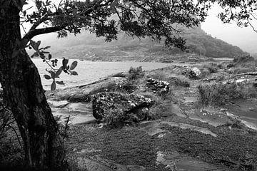 zwartwit landschap in de regen van Fred Lenting