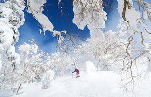 Freeride skieur Japon