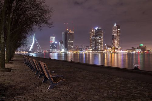 De kleuren van Rotterdam