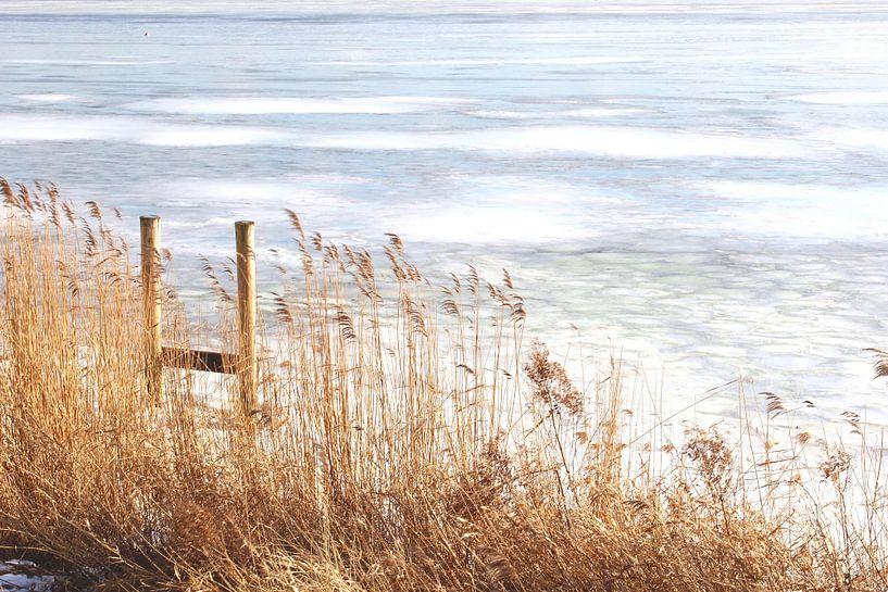Gefroren Marker See von Inge Hogenbijl