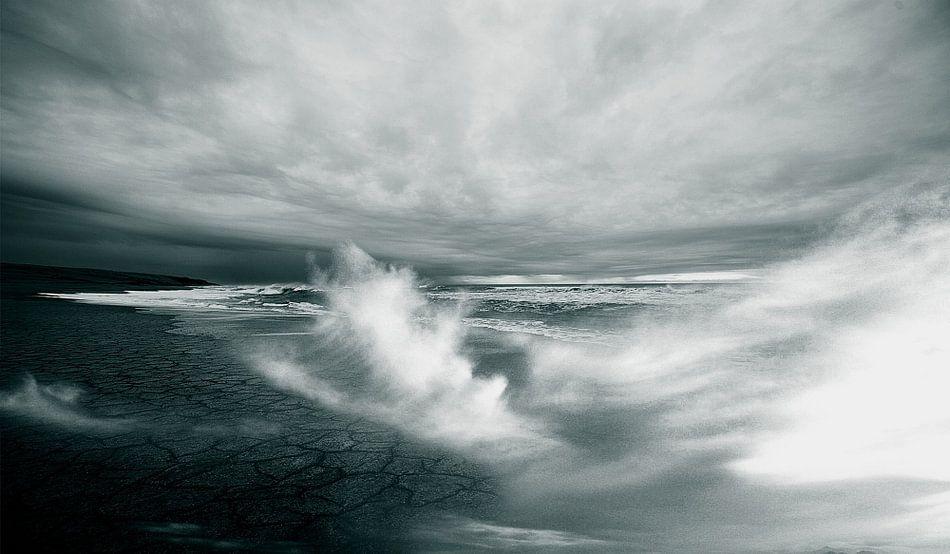 Oceaan von Laurance Didden