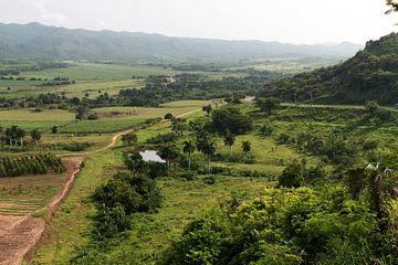 Vallei in Cuba von