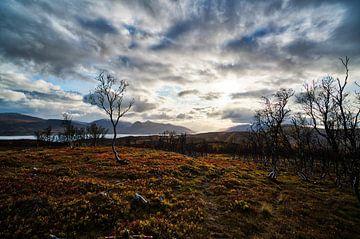 Vlak stuk op een berg met fjord op de achtergrond van Glenn Vlekke