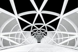 Netkous Fietsbrug over de snelweg A15 bij Rotterdam