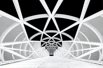 Netkous Fietsbrug over de snelweg A15 bij Rotterdam von Etienne Hessels