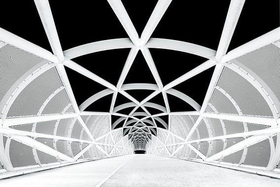 Netkous Fietsbrug over de snelweg A15 bij Rotterdam van Etienne Hessels