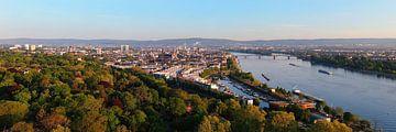 Luchtpanorama van de stad Mainz aan de Rijn van shop.menard.design - (Luftbilder Onlineshop)