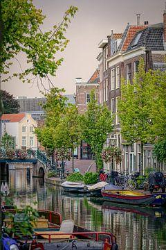 Altrhein Leiden von Dirk van Egmond
