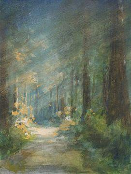 Zon doorweekt redwoods, Danhui Nai van Wild Apple