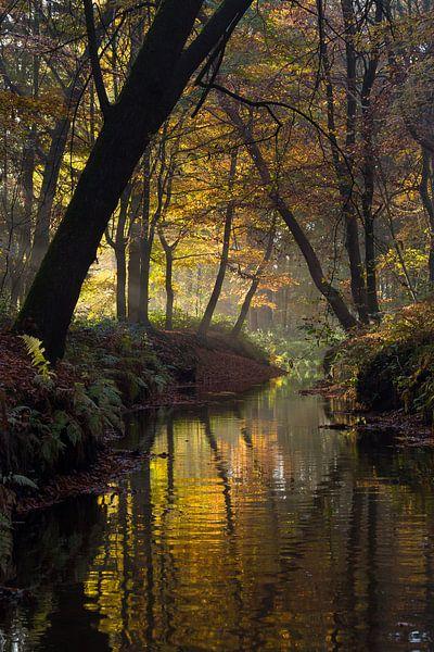 Sterkselse Aa bij Heeze in herfstsferen van Joep de Groot