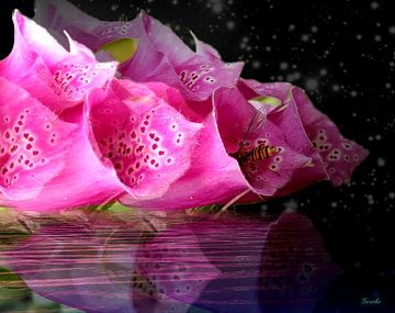 Ein Hauch von Floral van Gertrud Scheffler
