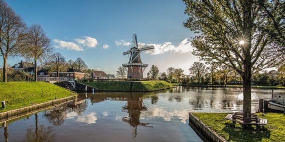 Bolwerk van Dokkum met molen en gespiegeld in de gracht