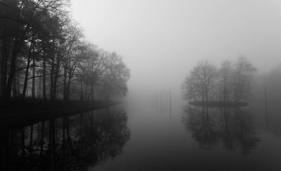 Mistig landschap landgoed Beerschoten