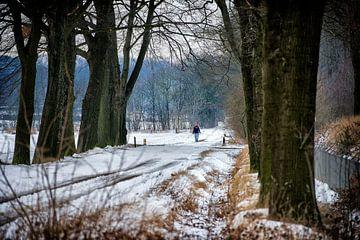 sneeuw sur Bas Quaedvlieg