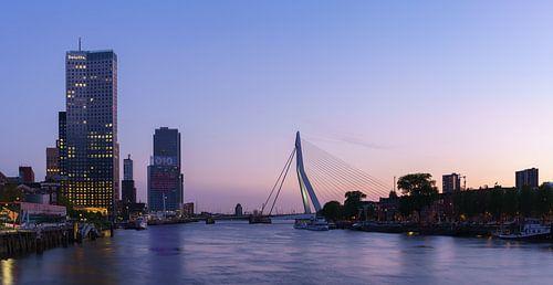 Skyline Rotterdam vanaf de Koninginnebrug