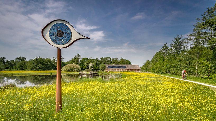 Het oog van het Curringherveld te Kornhorn van Martijn van Dellen