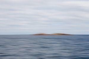 Verstild zeelandschap 2 van