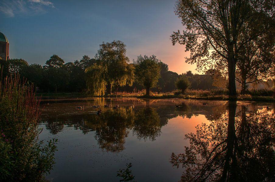 Het park in de ochtend zon