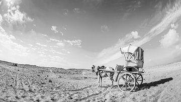 Einsam in der Wüste von Günter Albers