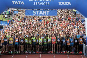 Marathon Amsterdam 2014 - Start toplopers sur Albert van Dijk