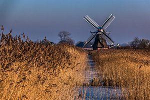 Nederlandse windmolen