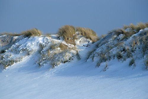 Een winters zonnetje op de besneeuwde duinen van