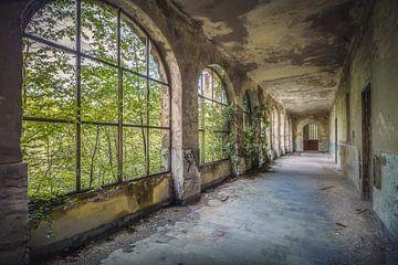 Het verlaten Klooster van Frans Nijland