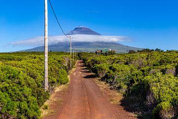 Plattelandshuis op Pico (Azoren)
