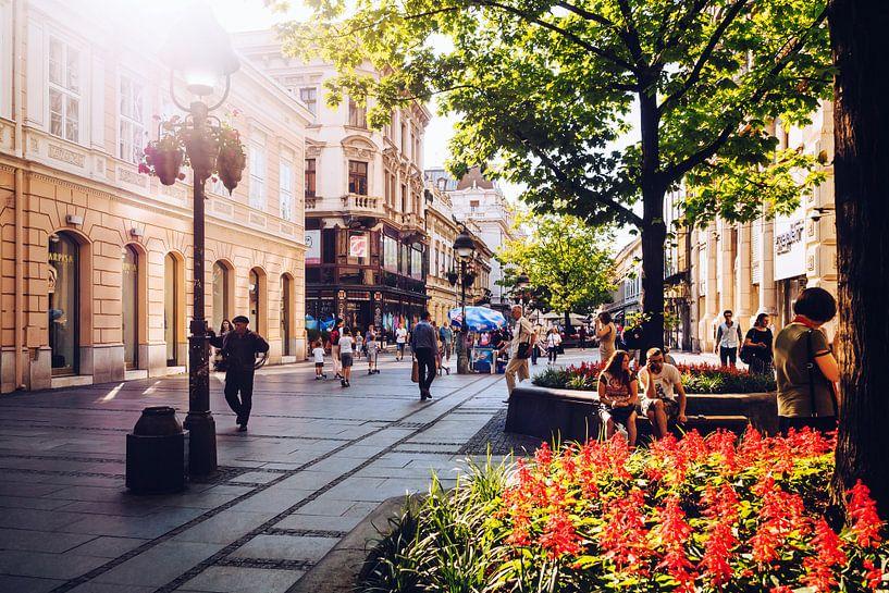 Belgrade - Knez Mihailova Street van Alexander Voss