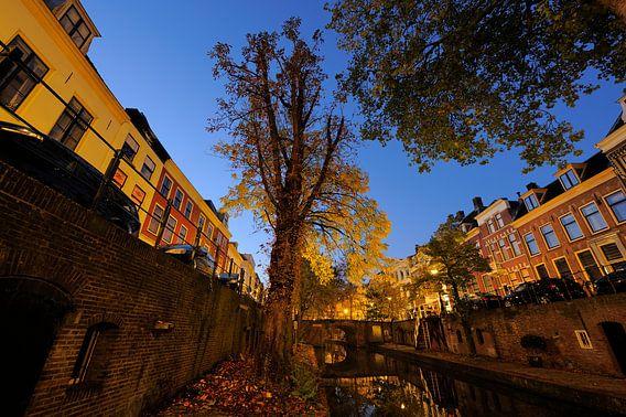 Nieuwegracht in Utrecht tussen Quintijnsbrug en Magdalenabrug in de herfst, foto 2