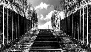 Zwartwit trap richting horizon met wolken van Goud Vis